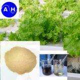 Polvo del aminoácido el 52% del fertilizante orgánico de Chengdu