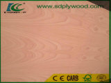 Red Beech Fancy Plywood for Middle East