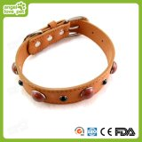 Cuero de alta calidad con el collar de perro decorativo de la joyería de Samll, producto del animal doméstico