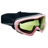 Reanson doppelte Objektiv-Anti-Fog Qualitäts-Schnee-Schutzbrillen