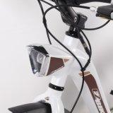 低価格のアルミ合金250Wの電気自転車のチョッパーのバイク