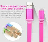 다채로운 5V 2A 국수 힘 은행 비용을 부과를 위한 편평한 TPE 물자 USB 데이터 케이블
