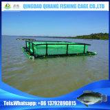 中国の熱い販売の普及した栽培漁業のケージフレームの浮遊