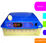 Hongzhouのセリウムが付いている自動56の容量の家禽の鶏の定温器は承認した