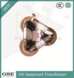 Transformateur/transformateur d'alimentation immergés dans l'huile d'énergie d'économie avec l'OIN, le TUV et la norme de la CE