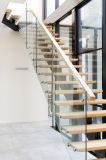 Escalier en bois solide avec la pêche à la traîne d'acier inoxydable
