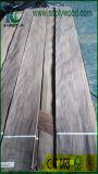 يشرّح جوزة قشرة لأنّ خشب رقائقيّ فاترة يستعمل لأنّ أثاث لازم
