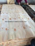placage en bois de 1270mm-2520mm pour le contre-plaqué