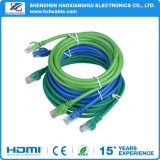 [1.5م] [هيغقوليتي] نوع ذهب يصفّى إتصال [كت6] شبكة كبل