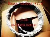 Rasiermesser-Draht 5 Rolls/Karton-/Razor-Draht-Bezirk-Lieferant