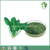 Extracto de Chlorophyllin del cobre del sodio de la naturaleza de la espinaca (chlorophyllin)