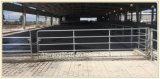頑丈なパネルを囲う牛鉄の塀のパネルによって電流を通される鉄