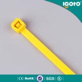 100% PA66 UL, CE, certifié RoHS Auto Parts attache de câble