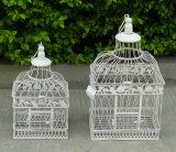 Un insieme antico dell'annata gabbia di uccello del ferro bianco di Wrough del metallo di 2 PCS di grande per la decorazione J13m Ts05 X00 Pl08-5843G di cerimonia nuziale