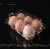 6 claras de ovos de PVC caixa de embalagem em blister