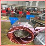 Da indução Squirrel-Cage assíncrona trifásica do ferro de molde de Ye2/Ye3 7.5kw/10HP motor elétrico