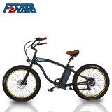 Fantas-fiets Vette 500W Beste Elektrische Fiets Boy002