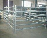 El panel cuadrado del corral del caballo del tubo 40X40m m de Australia/el panel de la yarda de las ovejas