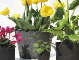 Hängendes Bag für Wall Plants Plant Grow Bags