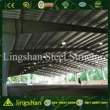 Arena dell'interno d'acciaio di guida dell'edilizia d'acciaio della Cina
