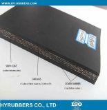 De Katoenen van de stof Transportband van CC Voor Online het Winkelen van de Verkoop Motor