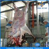 Macchinario del macello della mucca con il migliore prezzo