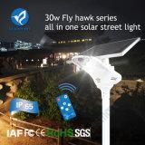 éclairage routier solaire élevé de la batterie au lithium de taux de conversion 30W DEL avec le panneau solaire