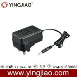 20W max Plug Switching Power Adapter