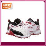 Neue Form Sports Kricket-Schuhe für Verkauf
