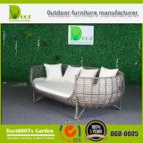 PE Rattan Mobiliario de Patio Exterior Sofá cama de mimbre de cama doble Hotel Daybed Hotel