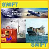 El transporte marítimo y transporte de mercancías de Guangzhou y Shenzhen y Shanghai y NINGBO al tema Ghana