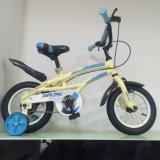 Sehr gute Qualität scherzt Fahrrad, Kind-Fahrrad für Europa-Markt