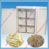 Sojabohnensprosse, die Maschine vom China-Lieferanten herstellt