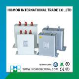 Bsmj Agmjのタイプコンデンサー低電圧フィルター電力コンデンサ