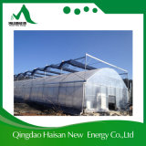 Estufa da agricultura da película da Multi-Extensão com sistemas de Hydropnic