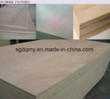 9 mm 12 mm 15 mm 18 mm Chapas de madera de álamo con Core