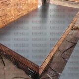Shandong Linyi Film enfrenta el contrachapado para la construcción de madera contrachapada de