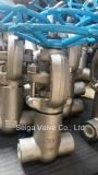 La flangia di diametro basso ha forgiato la valvola a saracinesca d'acciaio