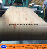 Design em madeira PPGI bobina de aço para as portas do Obturador