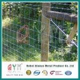 Azienda agricola del reticolato della rete fissa del pascolo che recinta la rete fissa del cavallo della rete fissa del campo