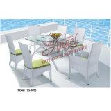 Патио с видом на сад для отдыха на открытом воздухе современной мебелью из ротанга обеденным столом Председателя