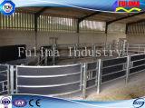 Сельскохозяйственное оборудование горячей DIP оцинкованных крупного рогатого скота Headlock/панель управления
