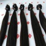 Micro capelli pre legati dell'anello con le migliori estensioni dei capelli umani di qualità