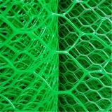 2016 جيّدة سعر [نتّينغس] سداسيّ خضراء بلاستيكيّة جلّيّة