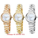 Het Horloge van de vrij Populaire Vrouwen van de Beweging van het Kwarts met de Band en Zwabber Fs505 van de Legering