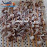 De bevroren Vleespen van de Pijlinktvis van Zeevruchten Rode Oceanic