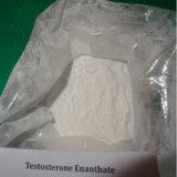 Testoterone steroide Enanthate della polvere di trasporto veloce per Musle-Costruzione veloce