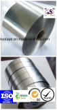 di alluminio che protegge il nastro del condotto del nastro