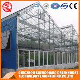 Multi estufa comercial do vidro do jardim de Venlo da extensão