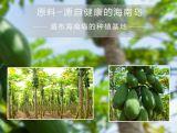 De Verse Drank van uitstekende kwaliteit van het Sap van het Poeder van de Papaja (Geen Bewaarmiddel, Geen Pigment)